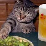 ビール むくみ